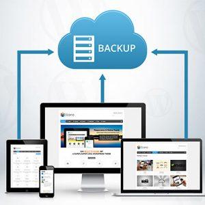 Canada Web Hosting Backups