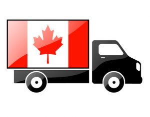 Canadian Ecommerce Business