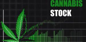 Cannabis-stock-tsx