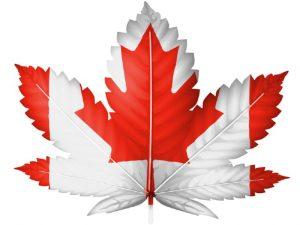 canadian-medical-marijuana
