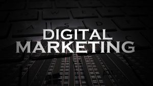 Digital Marketing Company for Growth Services