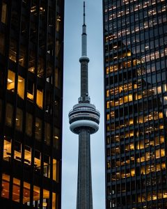 SEO Toronto SEO by Thought Media